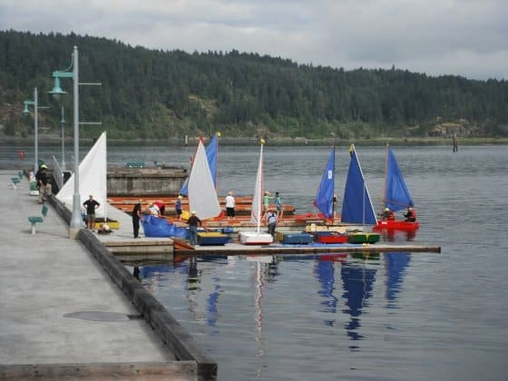 OzRacer wins PDRacer worlds 2013 getting ready to race